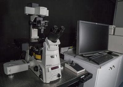 Microscopio Electrónico de Barrido FEI Quanta 450.